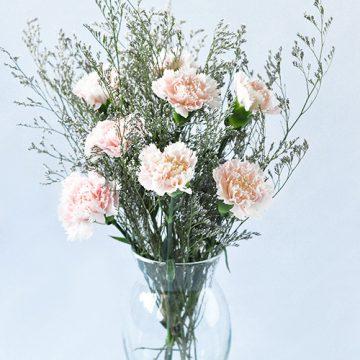 Bó hoa với 50 hoa hồng sen